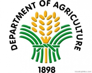 Department Of Agriculture Regional Field Office No.02
